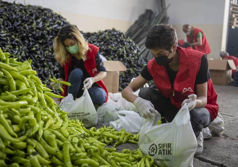 Mersin Büyükşehir Üreticiden Alıyor Vatandaşa Dağıtıyor