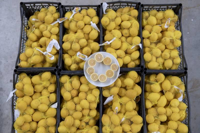 Mersin'in Limonları Bu Kez de Başkent İçin Yola Çıktı